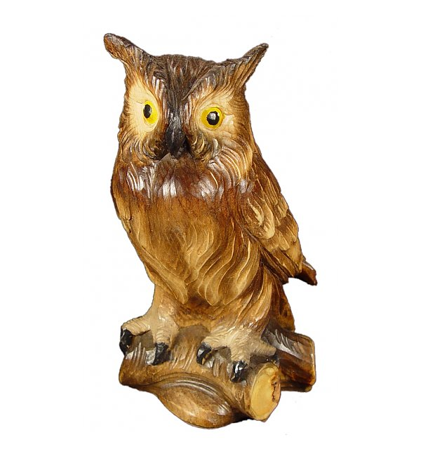 1341 - Owl in pine
