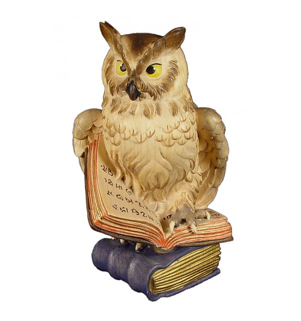 1043 - Owl on book