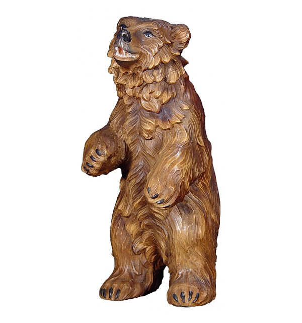 1375 - Bear standing in pine